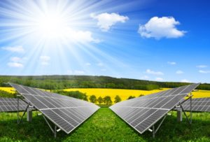 Paneles solares innovación sistema agroalimentario