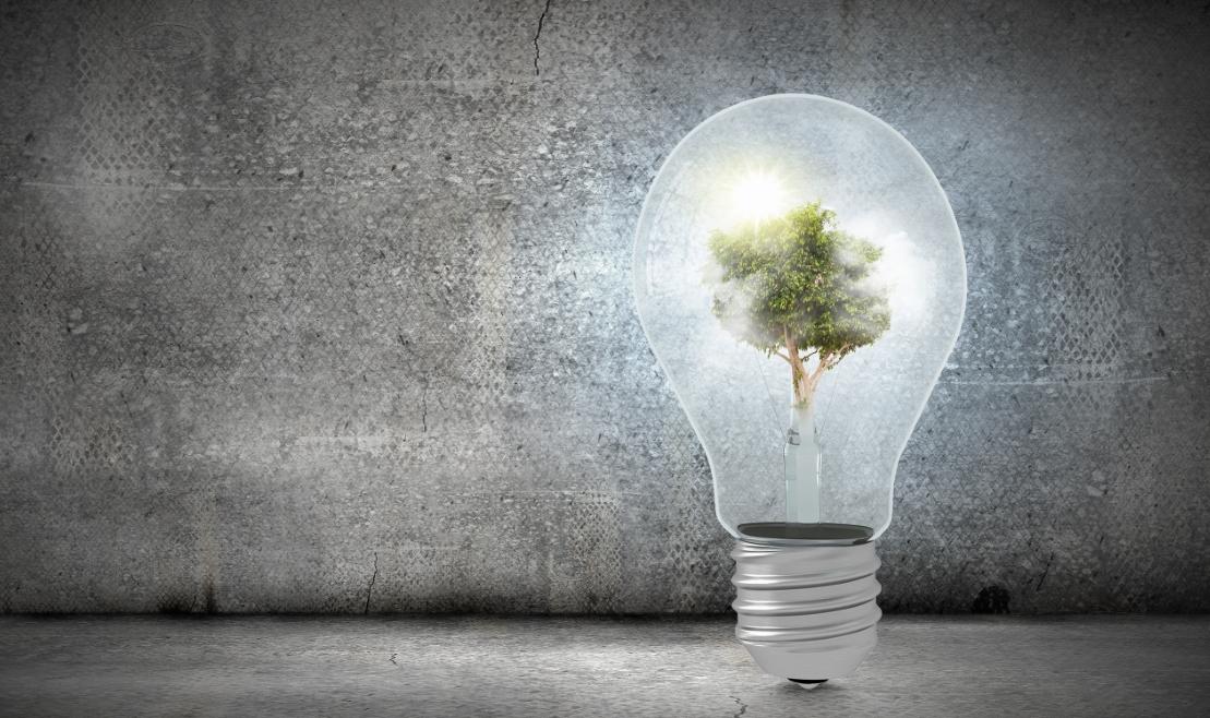 La apuesta por la innovación como clave para el desarrollo del sector agroalimentario