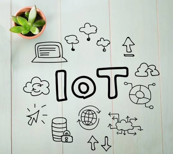 IoT medio ambiente