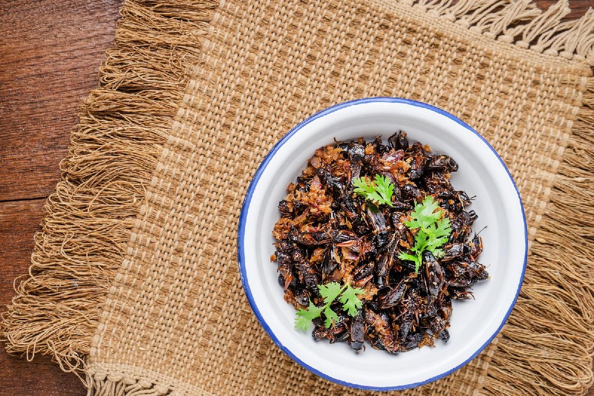 21 Bites, el ecommerce de alimentos elaborados con insectos comestibles