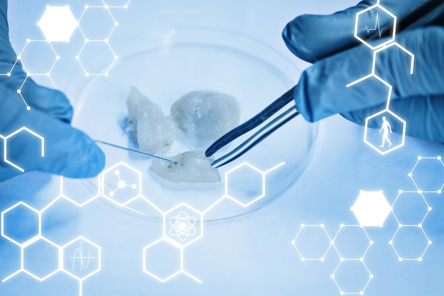 La carrera por hacer realidad la carne del laboratorio