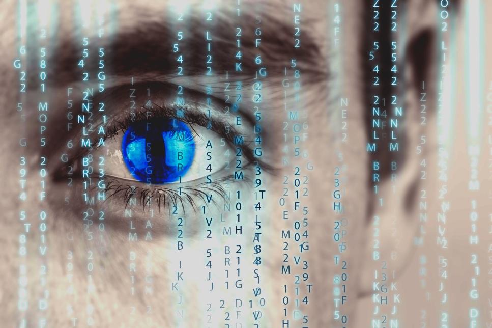 ¿Es la computación humana la solución a los problemas del mundo?