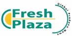 fresh plaza logo