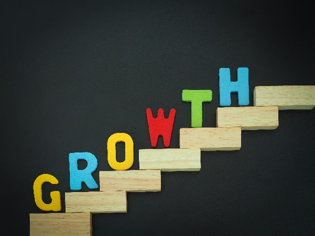 Los CEO del sector tecnológico confían en crecer este año