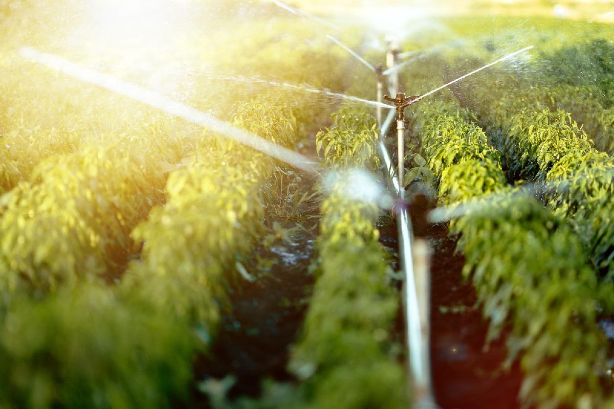 Big Data e Inteligencia Artificial para una gestión eficiente del agua
