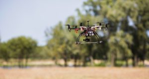 drones reforestar