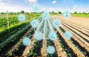 cultivos inteligencia artificial