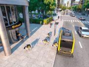 perros robots continental