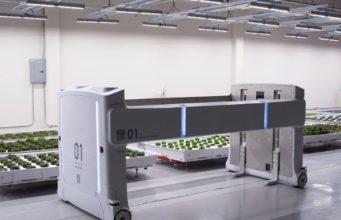 hortalizas robots
