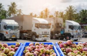 Los líderes de la industria alimentaria alertan sobre el peligro existente en la distribución de los alimentos