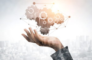Calidad, innovación y valor añadido, factores clave para la exportación