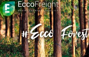 eccofreight-dia-internacional-bosques-proyecto-eccoforest