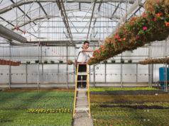 hortalan-med-aumenta-productividad-20-por-ciento-sap-business-one